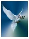 colombe de l'Esprit de paix.jpg