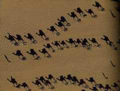 caravane au Niger.jpg