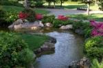 jardin arrosé.jpg