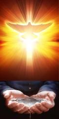 Dons de l'Esprit Saint.jpg